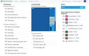 perfil-seguidores-analytics-twitter-diretriz-digital-agencia-marketing
