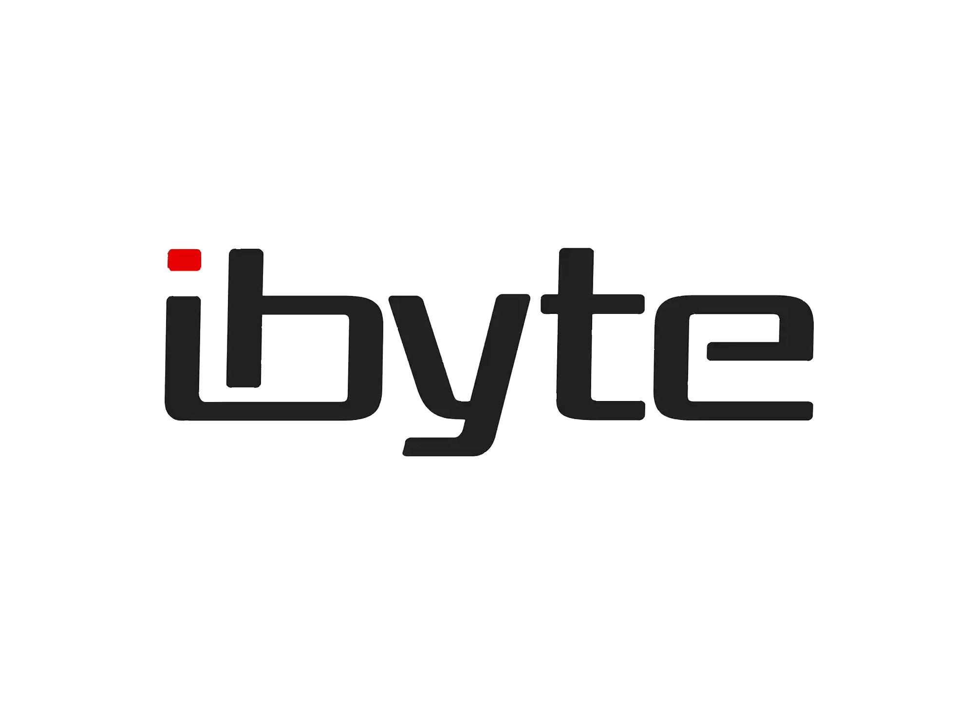 loja-ibyte-clientes-atendidos-agencia-diretriz-digital-marketing-fortaleza