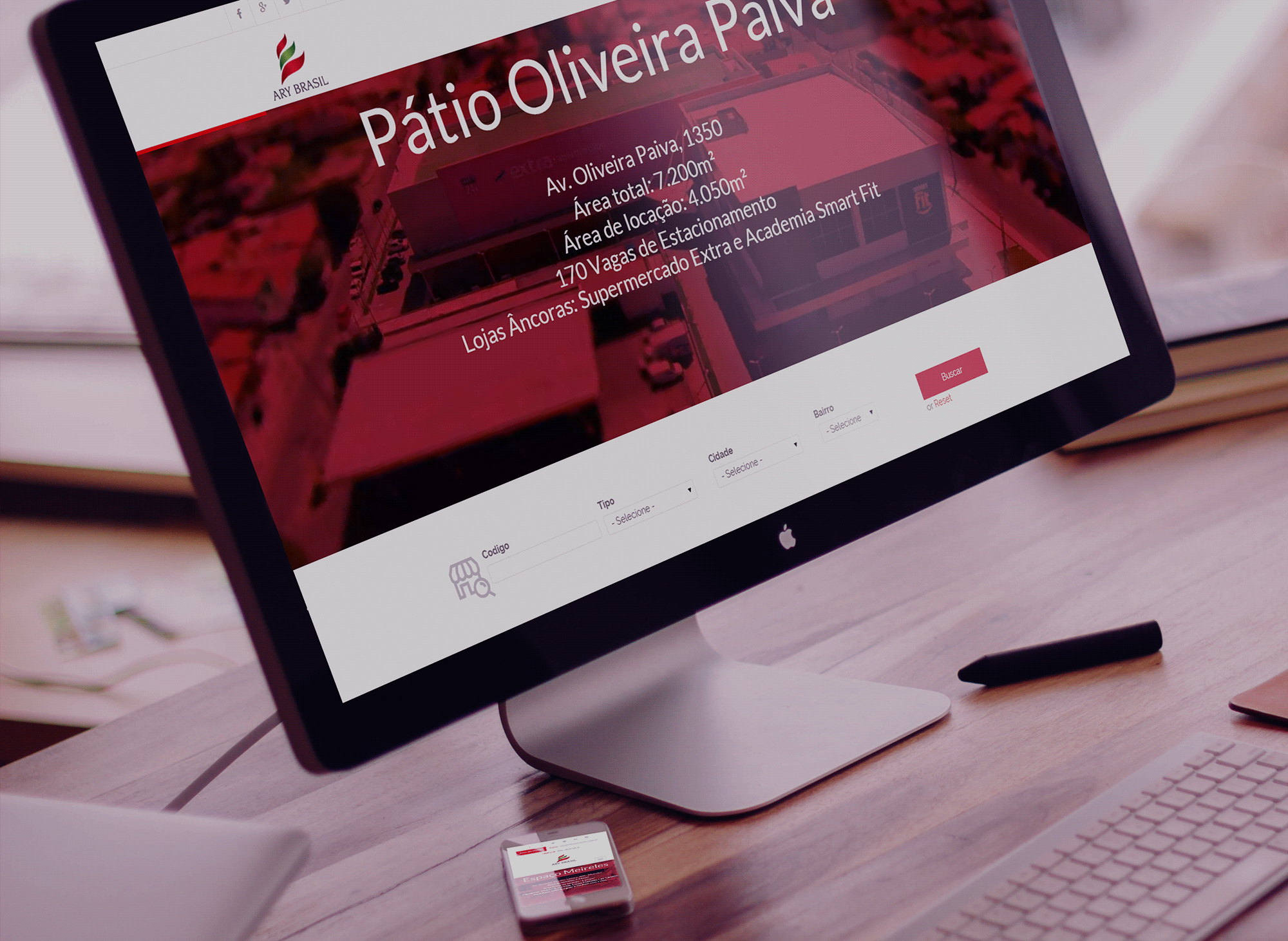 site-ary-brasil-portfolio-criacao-sites-agencia-diretriz-digital-marketing